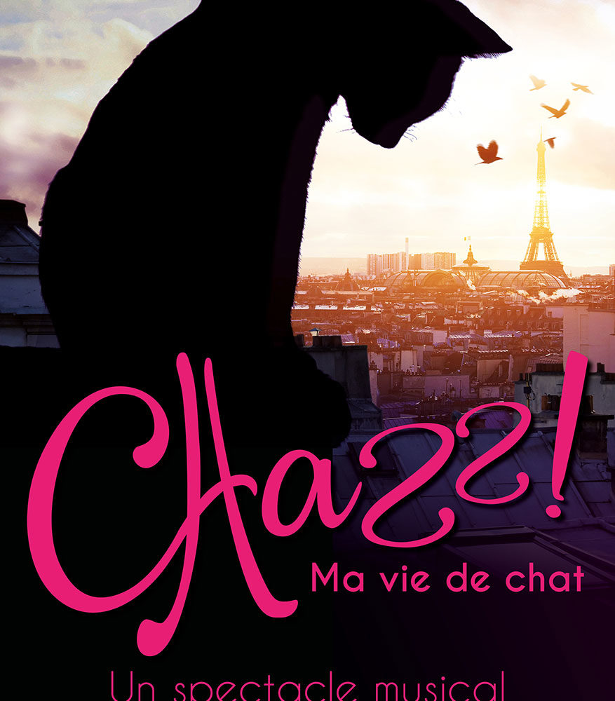 Chazz ! Ma vie de chat